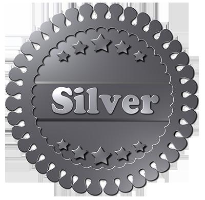 Partnerstatus Silber